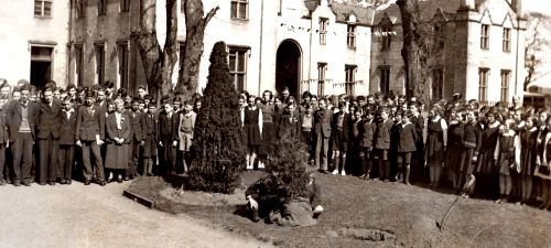 Commemorative tree planting